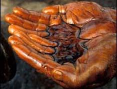 Нефтяное загрязнение вышло в Черное море и движется на север