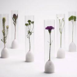 Экологичная ваза для цветов от дизайнеров из Токио