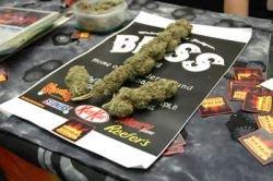 В Амстердаме открылся 20-й фестиваль марихуаны Cannabis Cup (фото)