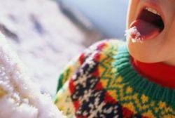 5 продуктов для зимней диеты: меньше сладкого, больше сала