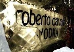 Роберто Кавалли стал виноделом