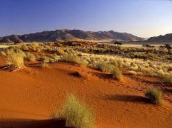 Из-за глобального потепления Кипру грозит беспрецедентная засуха