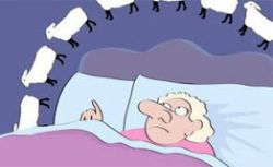 Две функции сна. Необходимо и достаточно