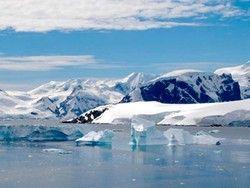 Новость на Newsland: Во льдах Южного полюса нашли останки древних насекомых