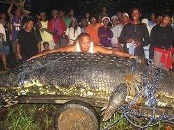 Самый большой крокодил в мире умер на Филиппинах