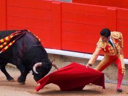 Испанские власти могут отменить запрет на корриду в Каталонии