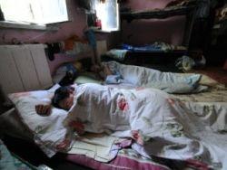 """СПЧ предложит альтернативу законопроекту о """"резиновых домах"""""""