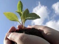 За 2013 год Минприроды планирует разработать 12 законопроектов