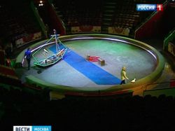 Аренда здания обойдётся Цирку Никулина в 1 рубль за кв. метр