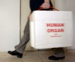 В 2008 году в России, возможно, узаконят детское посмертное донорство. Но выжить это поможет лишь единицам