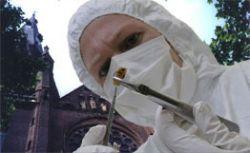 Средневековые могилы раскрыли тайну иммунитета к СПИДу