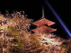 Япония прекратила антитеррористическую помощь США