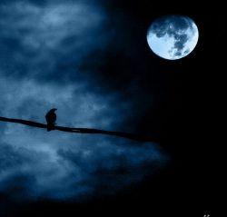 Китайцы впервые в своей истории сфотографировали Луну