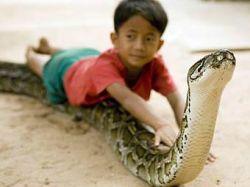 Мальчик из Камбоджи Самбат Уон завел пятиметрового домашнего питона