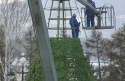 Главная ёлка Красноярска будет самой высокой в России
