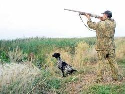Пуще неволи: охотников будут учить охотиться