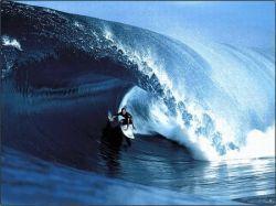 Легендарный серфер Макнамара оседлал чудовищную волну