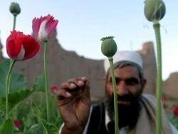 Эксперты назвали три пути развития Афганистана