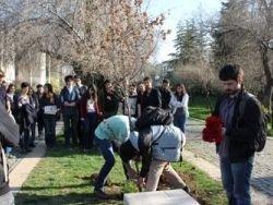 Митинг в знак памяти погибших в результате теракта в Дамаске