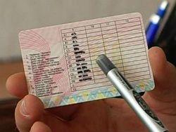Украинцам предстоит заменить водительские удостоверения