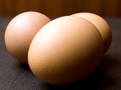 Бизнес-идея: реклама на куриных яйцах