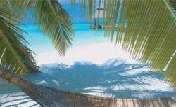 Выключение мозга, или Зачем нужны Мальдивы