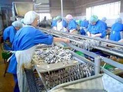 Инспекторы РФ проверят рыбные предприятия Норвегии