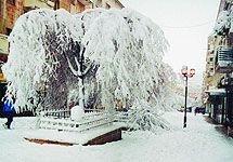 В Бресте решили проблему с недостатком снега