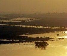 В Индии загрязнение воды вызвало генетические мутации у людей