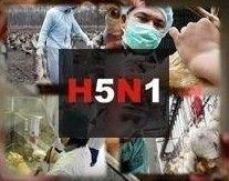В Китае еще один человек умер от птичьего гриппа