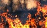 Число погибших при взрыве на заводе в Свердловской области увеличилось до двух человек
