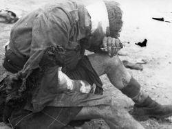 Теги ссср сша вторая мировая война