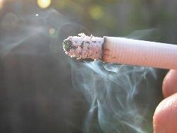Новость на Newsland: Москва строит уголки курильщиков на улицах