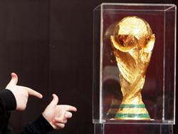 Новость на Newsland: FIFA сможет продавать спиртное на российских стадионах