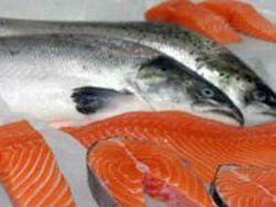 Новость на Newsland: Норвегия поставляет в РФ зараженную гельминтами рыбу