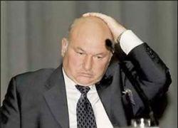 Юрий Лужков посоветовал москвичам работать рядом с домом