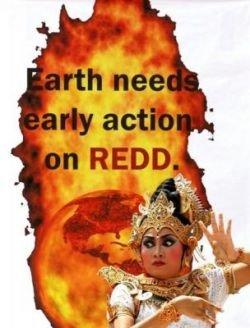 В Индонезии прошла акция против глобального потепления (фото)