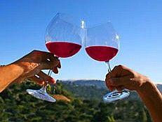 Вино дешевле 500 руб. вином называться не может