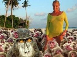 Новость на Newsland: На Анастасию Волочкову в Таиланде напали обезьяны