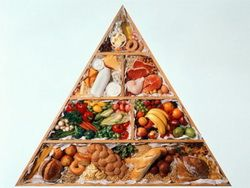 Новость на Newsland: Мифы о здоровом питании и их опровержение