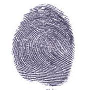 Как подделать отпечатки пальцев? (видео)