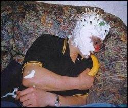 До чего доводят пьяные веселья (фото)