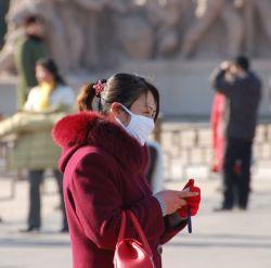ВОЗ допускает, что птичьим гриппом можно заразиться от человека