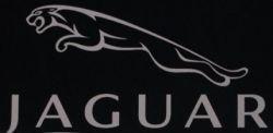 Автодилеры вступились за имя Jaguar и требуют не продавать марку индийцам