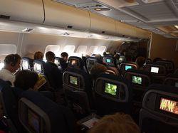60 процентов австралийцев пожелали удвоения стоимости авиабилетов для крупногабаритных пассажиров