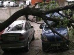 Непогода в Украине обесточила 468 населённых пунктов