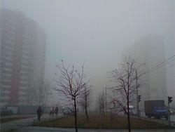 Движение на московских дорогах парализовал сильный туман