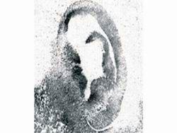Новость на Newsland: Во Франции грузина-домушника нашли по отпечаткам ушей