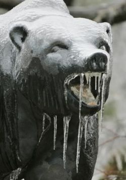 В США ледяные дожди убивают людей (фото)