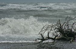 Субтропический шторм «Ольга» угрожает странам Карибского бассейна